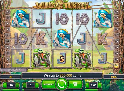 Hedelmäpelin Wild Turkey rahoilla